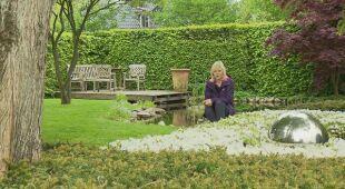 Niemiecki ogród z bukowym płotem i kucykami (odc. 656)